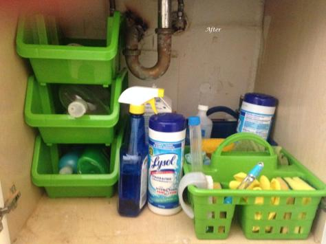 Under the sink - Dollar Tree buys (total spend: $6.25)